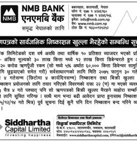 Debenture Issue Notice